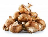 Pile Of Raw Mushrooms