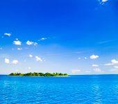 Seascape Serenity Dream