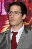LOS ANGELES - DEC 10:  Andy Samberg at the