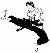 Jump Front Heel Kick