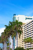 Boulevard with modern buildings and palm trees in Miami Beach Florida.