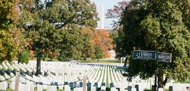 stock photo of headstones  - Arlington Cemetery white headstone amongst trees and direction sign to JF Kennedy grave and Tomb of the Unknown Soldier - JPG