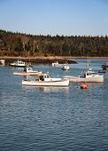 foto of lobster boat  - Moored lobster fishing boats in a bay in maine
