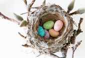 stock photo of easter candy  - Easter Holiday Celebration - JPG