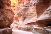 stock photo of square mile  - Petra, Lost rock city of Jordan. Petra