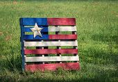 picture of wooden pallet  - Decorative wood pallet flag with Texas star displayed against spring meadow - JPG
