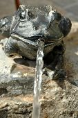 stock photo of water jet  - Fountain with brass frog and water jet - JPG