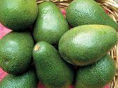 Basket Of Avacado Pears