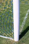 Hang Bended Soccer Nets, Soccer Football Net. Grass On Football Playground In The Background poster