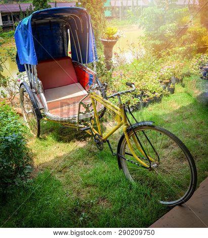 Old Bike Tricycle Vintage Garden