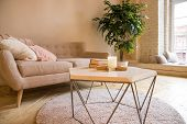 Sofa, Coffee Table And Plant In Living Room Styled Scandinavian.couch And Potted Plant In A Cozy Liv poster