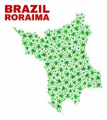 Vector Marijuana Roraima State Map Collage. Concept With Green Weed Leaves For Weed Legalize Campaig poster