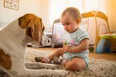 Little Baby Girl Play With Beagle Dog On A Floor At Home poster