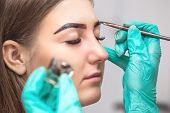 Makeup Artist Applies Paint Henna On Eyebrows In A Beauty Salon. Professional Care For Face. poster
