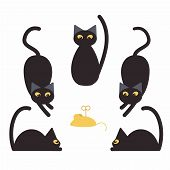 Black Cats And Fake Yellow Mouse. Childish Illustration With Cats poster