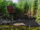 River, Boat And Bulrush