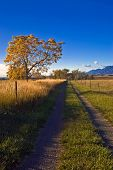 Autumn Rural Country Road In Boulder Colorado
