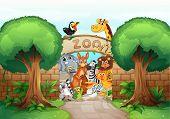 Ilustración de un zoológico y animales en la naturaleza hermosa