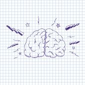 Vector illustration of a human brain