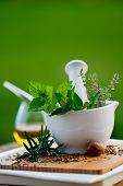 Fresh herbs in the mortar - healthy food, alternative medicine