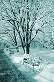 decorative bench in winter park