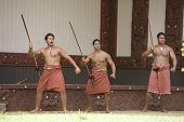 Maori Greeting Ceremony