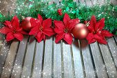 Christmas decoration with poinsettia, seasonal background for greeting cards