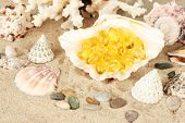 fish oil in the shell on the sand. idea of sea gifts