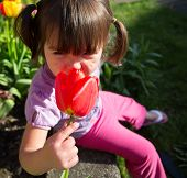 Beautiful Young Girl Smelling A Tulip Flower In The Garden