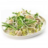 Fresh Haricot Vert Salad With Radish Sprout And Mushrooms
