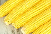 stock photo of sweet-corn  - Crude corns on wooden table - JPG