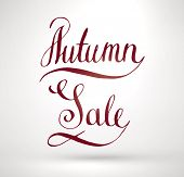 Autumn Sale Hand Lettering. Handmade calligraphy, vector
