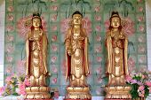 Avalokiteswara - Kuan Yin Statues, at the Buddhist Temple of Supreme Bliss : Kek Lok Si, Penang, Malaysia