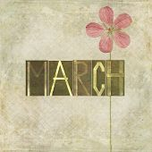 Earthy background and design element depicting the word for the month of March
