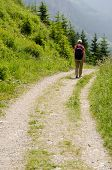 Woman Is Hiking On A Mountain Trail