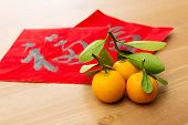 Chinese new year calligraphy and kumquat, word meaning is good luck