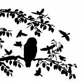 foto of songbird  - Editable vector silhouettes of songbirds mobbing an owl with all birds as separate objects - JPG
