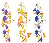picture of grape-vine  - set of stylized grapevine with grapes - JPG