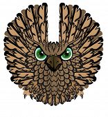 Nocturnal birds of prey. Owl.
