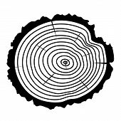 picture of white bark  - vector black and white wooden cut of a tree log with concentric rings and bark - JPG