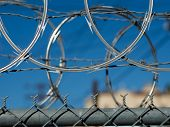 Razor barbed wire security fence in Los Angeles. Closeup.