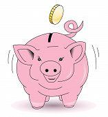 Piggy bank collect coins