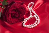 Red Rose with Pearl Necklace on a Red Silk background
