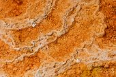 Microbial mat pools close up in  Yellowstone National Park,Wyoming