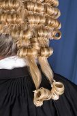 Back look of a lawyer wearing an authentic horsehair wig