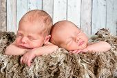 Ten days old newborn twin babies asleep together
