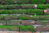 Brick Wall Texture Background With Grass And Mos