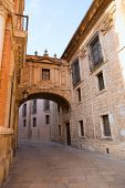 Valencia Cathedral Arch Barchilla street at Spain Europe