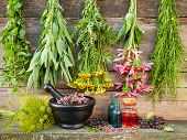 stock photo of chokeberry  - bunches of healing herbs on wooden wall mortar with dried plants and bottles herbal medicine - JPG