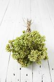 Bunch Of Dry Oregano On White Table